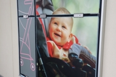 wall graphics buy buy BABY c-