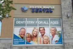 Window vinyl with laminate for Dentistry
