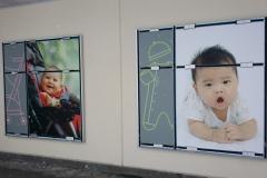 wall graphics buy buy BABY o